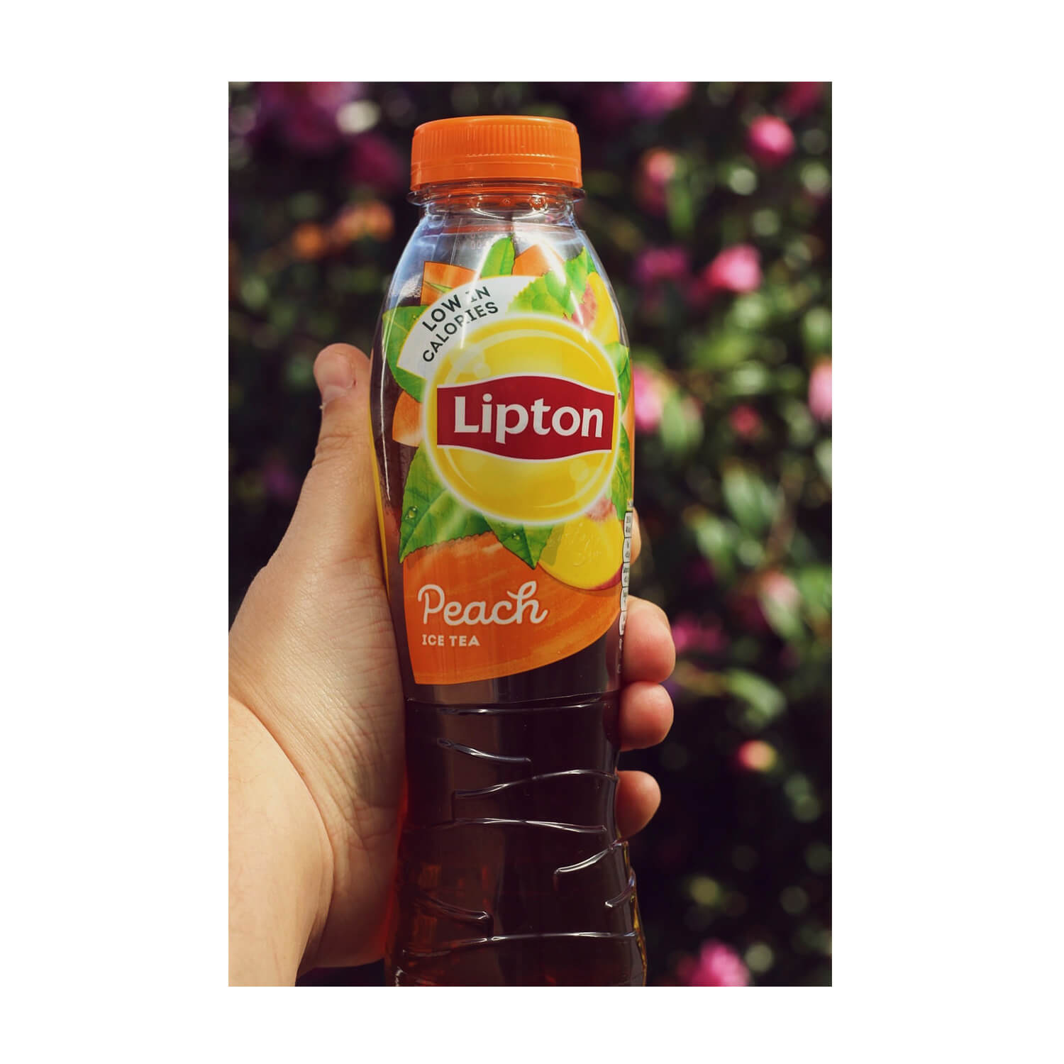My favourite drink